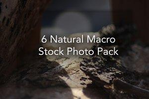 6 Natural Macro Stock Photo Pack