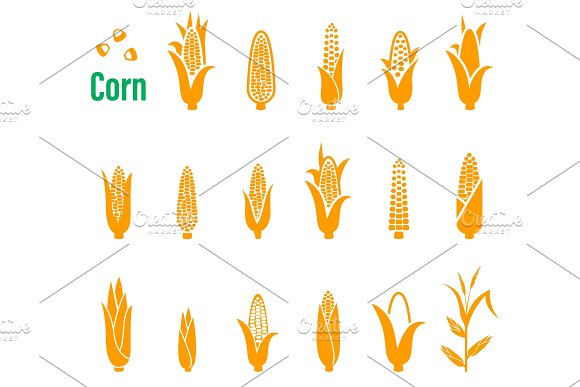 Vector Set Of Icons And Logos With Corn On A White Background