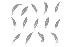 Vector set of feather.