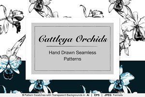 Hand Drawn Cattleya Orchid Patterns