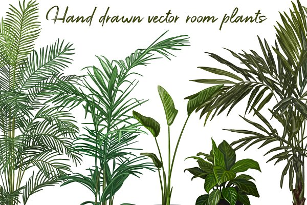 Set of Hand drawn vector room plant…