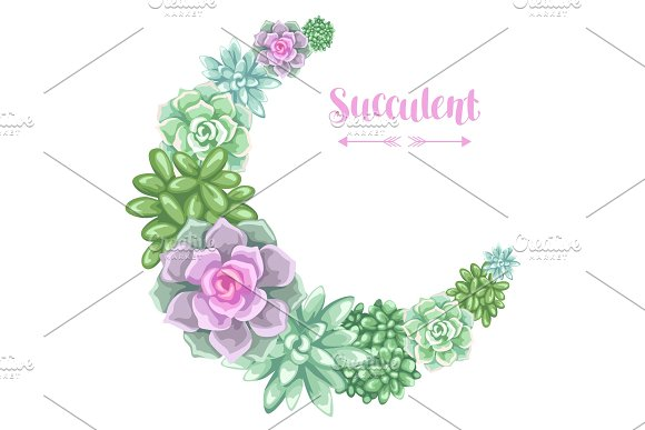 Wreath With Succulents Echeveria Jade Plant And Donkey Tails