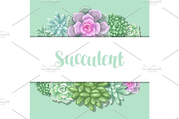 Card With Succulents Echeveria Jade Plant And Donkey Tails