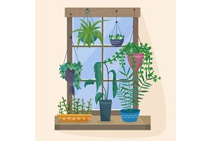 Window with houseplants and flowers in pots.