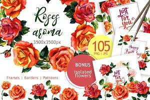 Paradise roses PNG watercolor set