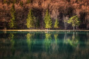 Zavrnica lake in spring