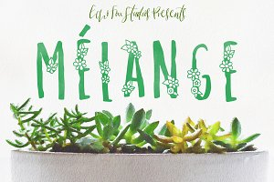 Melange: A Flower Font for Spring