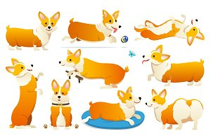 Set of cute dogs breed Welsh Corgi Pembroke on white background. A domestic pet, a happy royal animal for girls. Funny Red haired puppy looks like a fox. Vector illustration.