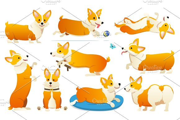 Set Of Cute Dogs Breed Welsh Corgi Pembroke On White Background A Domestic Pet A Happy Royal Animal For Girls Funny Red Haired Puppy Looks Like A Fox Vector Illustration