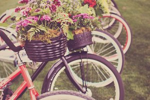 Vintage Bicycles with Flower Baskets