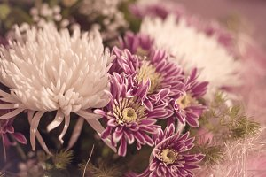 Bouquet Flowers Chrysanthemums