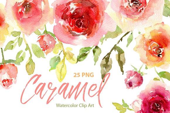 Watercolor Rustic Roses Purple Pink