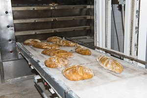 Bread loaves coming out of an industrial oven