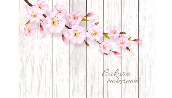 Nature Sakura Background Vector