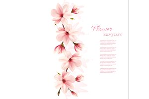 Nature magnolia background. Vector