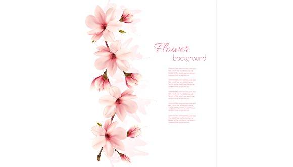 Nature Magnolia Background Vector