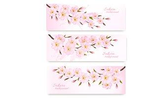 Pink sakura branches. Vector