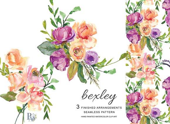 Watercolor Peach Purple Roses