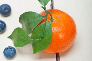 blueberry and tangerine orange 001.jpg