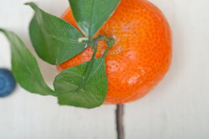 blueberry and tangerine orange 003.jpg