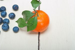 blueberry and tangerine orange 005.jpg