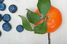 blueberry and tangerine orange 004.jpg