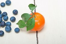blueberry and tangerine orange 006.jpg