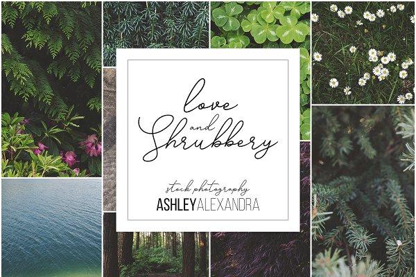 Love & Shrubbery Insta Bundle