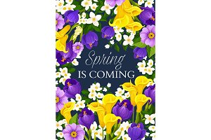 Spring season holiday flowers vector greeting card