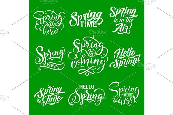 Spring Lettering For Springtime Season Holiday