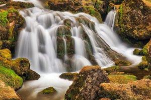 Iceland Moss Cascades