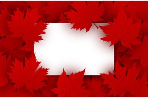 White paper and red maple leaves