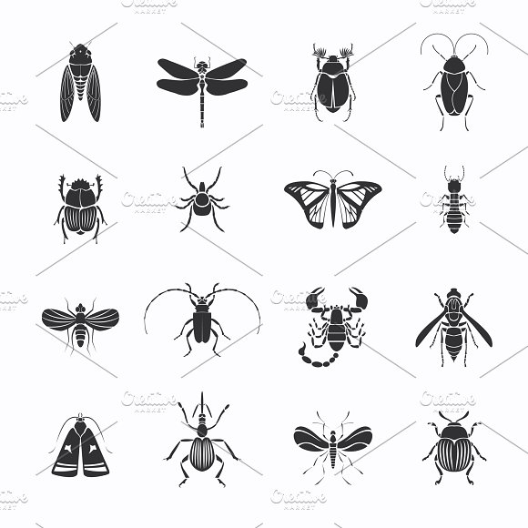 Monochrome Insects Silhouettes Set