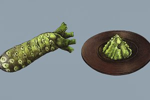 Hand drawn wasabi Japanese (PSD)