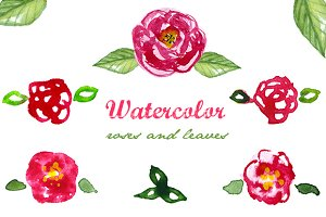 Watercolor roses and leaves,clip art