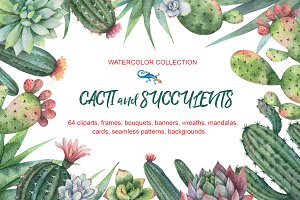 Watercolor Cacti and Succulents.