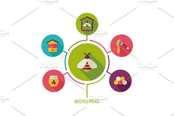 Beekeeping icon and agriculture infographics