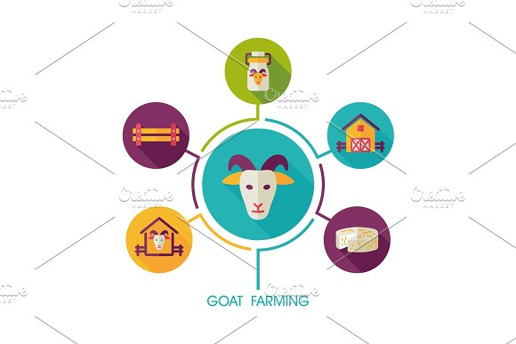 Goat farming icon and agriculture infographics
