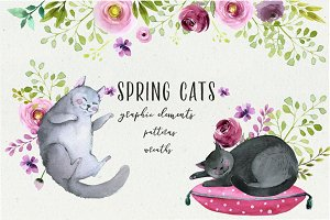 Spring cats - graphic set