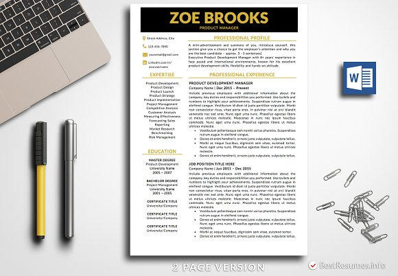 infographic resume cv template resume templates creative daddy