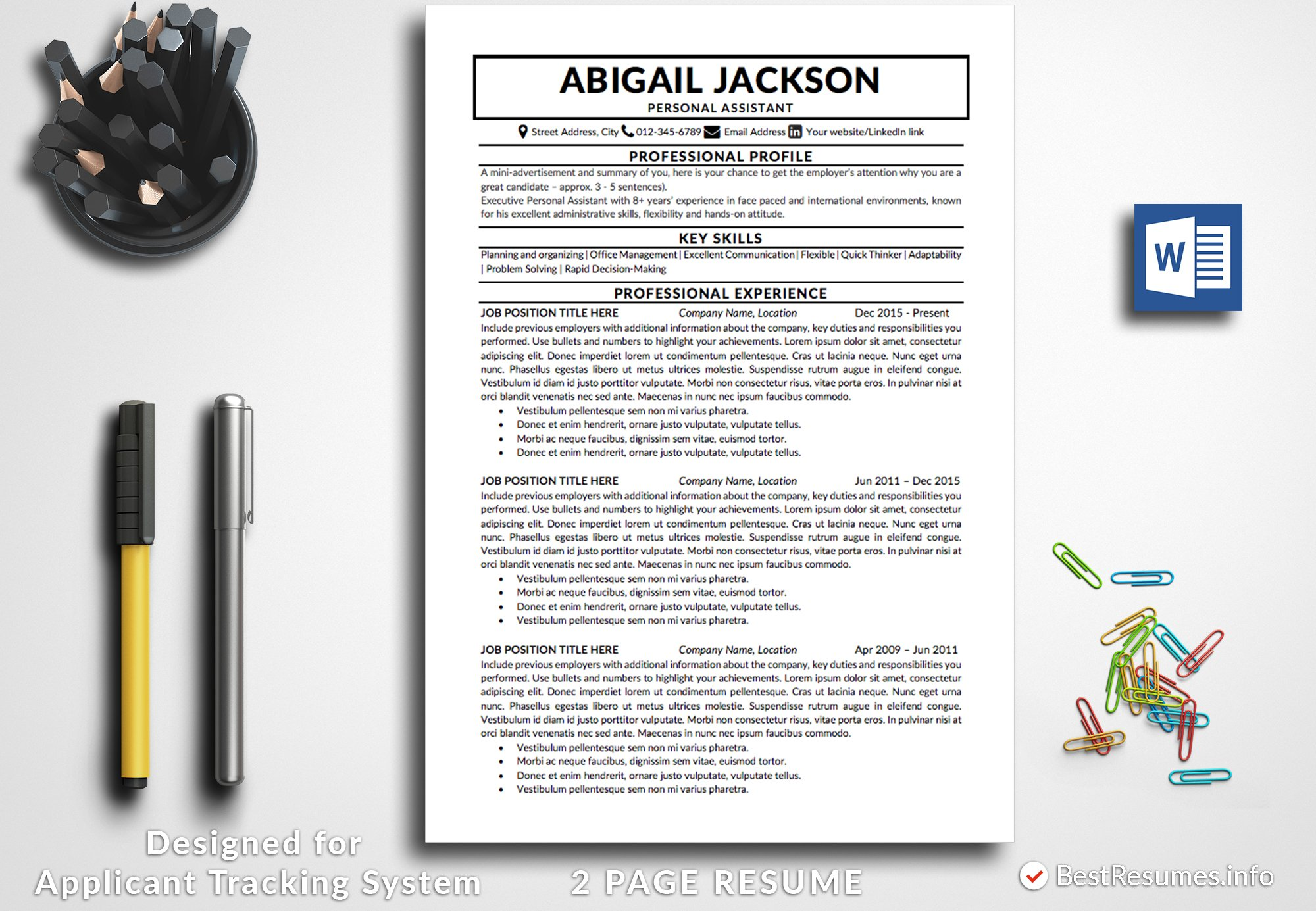 Professional Resume Template Word Creative Daddy