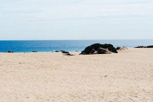 Scenic view of sea and desert landsc