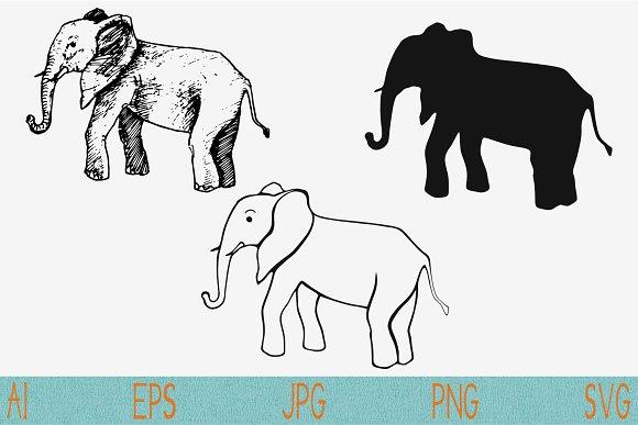 Elephant Vector SVG PNG JPEG