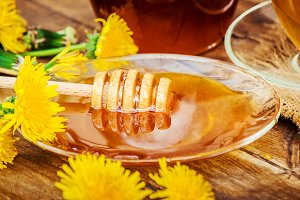 Honey from dandelion