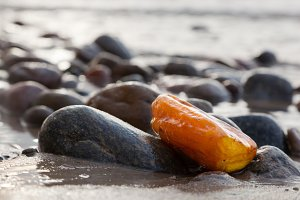 Amber stone on rocky beach