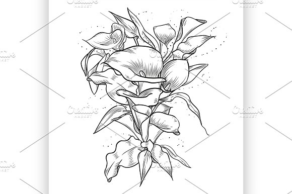 Abstract Template With Callas