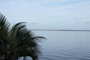 St. Johns river in Florida