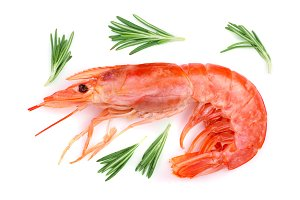 Red cooked prawn or shrimp with rosemary isolated on white background. Top view