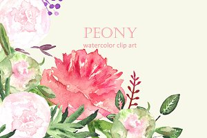 Peony set watercolor clip art