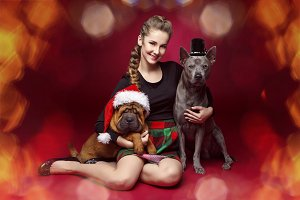 Pretty girl with dogs in christmas hats